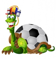 football turtle vector image