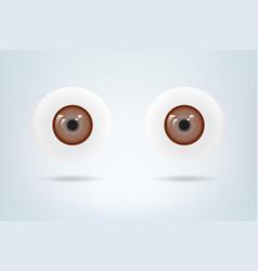 Human brown eyes balls pupil medical visual vector