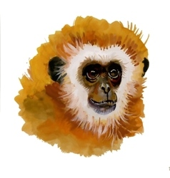 Monkey oriental animal ink painting vector