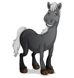 A smiling black horse vector image