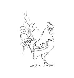 Black sketch drawing of rooster Chinese New Year vector image vector image