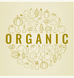 food and drink background organic food fruits vector image vector image