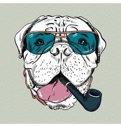 Funny cartoon hipster dog bullmastiff vector