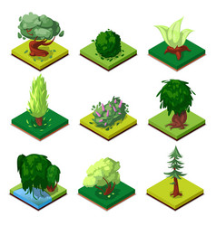 Public park decorative trees isometric 3d set vector
