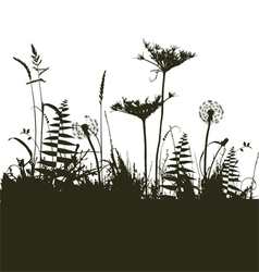 Traced elements - The meadow in summer time vector image