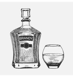 Creative sketch of brandy composition vector