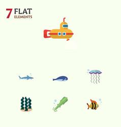 Flat icon sea set of cachalot medusa alga and vector