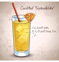 Screw driver cocktail vector