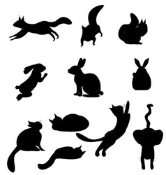 Isolated black silhouettes cat rabbit squirrel vector image
