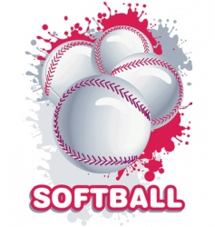 softball vector image