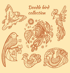 Hand drawn bird collection vector