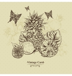 Vintage Greeting Card Tropical Fruit Flowers vector image vector image
