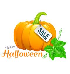 Halloween beautiful pumpkin sale vector
