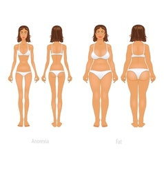 different body types set vector image
