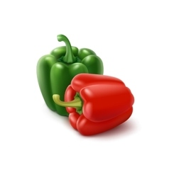 Two green and red bell peppers on background vector
