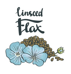 Flax seeds with flowers vector