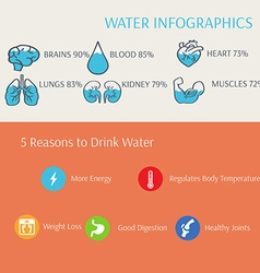 Water in human body infographics vector