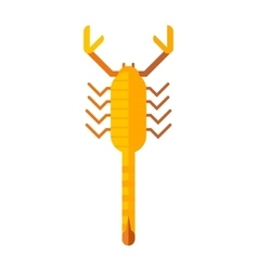 Scorpion yellow silhouette insect animal vector