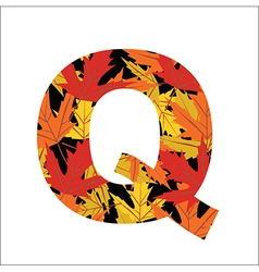 Q Letter vector image
