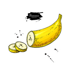 Banana sliced piece drawing isolated hand vector