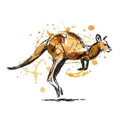 Colored hand sketch leaping kangaroo vector