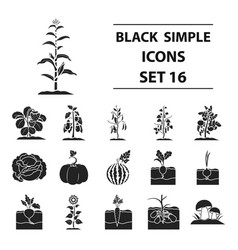 plant set icons in black style big collection of vector image