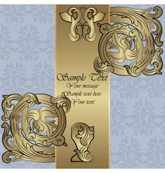 Renaissance Royal classic ornament invitation vector image vector image