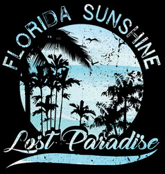 sunset at tropical beach florida vector image