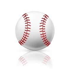 Baseball vector