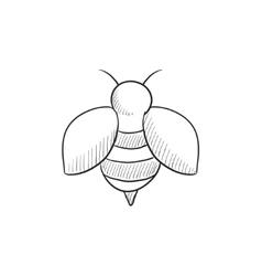 Bee sketch icon vector image vector image