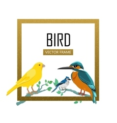 Birds frame flat design vector
