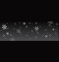 snowflakes in different shapes background vector image vector image