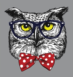 Hipster owl with glasses and bow tie vector