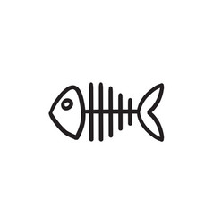 Fish skeleton sketch icon vector