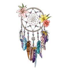 hand drawn ornate dreamcatcher with lily flowers vector image