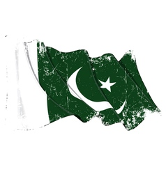 Pakistan flag grunge vector