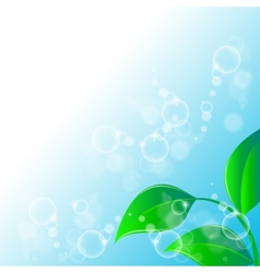 Green leaves ecology on lighting blue background vector