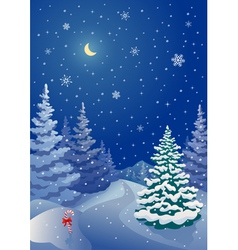 Christmas coniferous forest vector image vector image