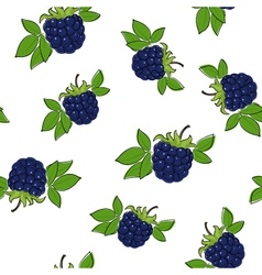 Seamless pattern of blackberry vector