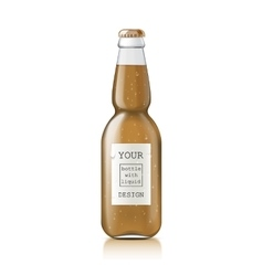 Sample of empty beer bottles vector