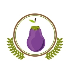 Fresh eggplant vegetable vector