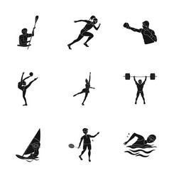 Image result for winter and summer sports