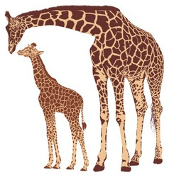 Giraffe mother with cub vector image vector image