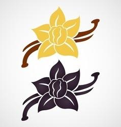 Vanilla flower vector image