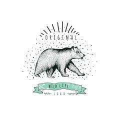 Vintage label bear Design for T Shirt vector image vector image