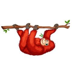 A red orangutan vector