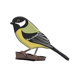 hand drawn bird great tit vector image vector image