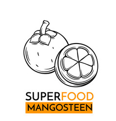 Icon superfood mangosteen vector