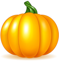 Cartoon pumpkin isolated on white background vector