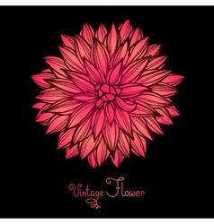 Bright dahlia flower isolated for design vector